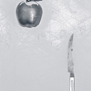 Apple and knife # 1003. Version # 2.