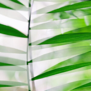 Parallel botany #8356