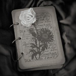 Paper flower #9711